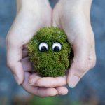 Έργα ύψους 16,3 εκατ. ευρώ εγκρίθηκαν από το Πράσινο Ταμείο