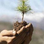 Χρήστος Ζερεφός: Σε ερημοποίηση θα οδηγηθεί το 40% της χώρας