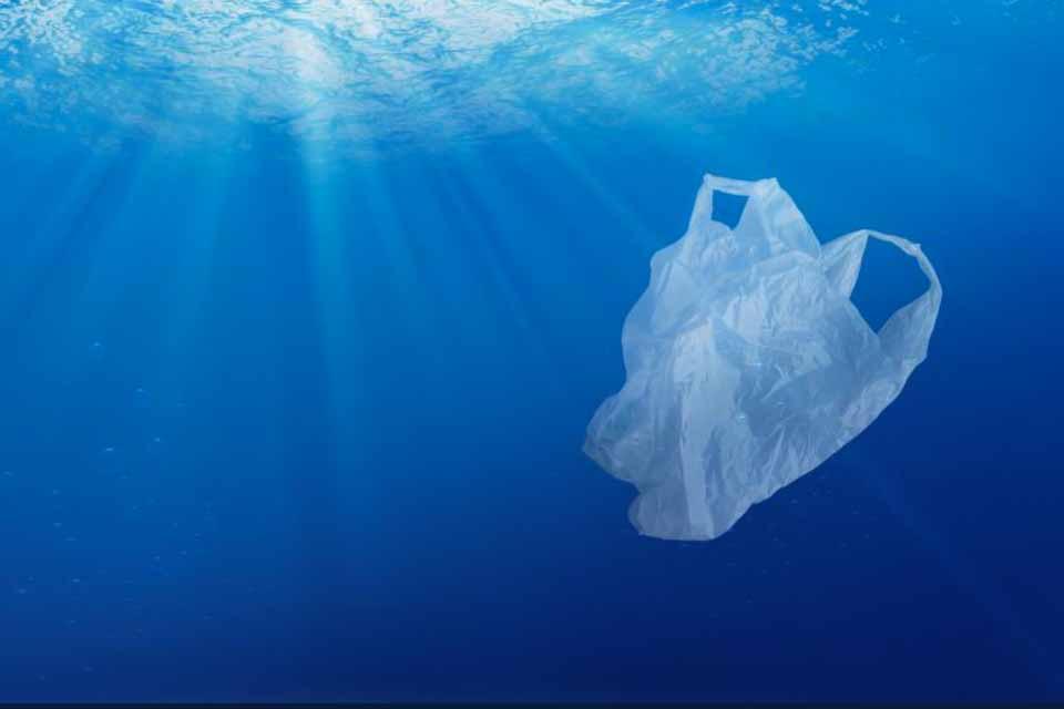 Η πρωτοβουλία καθαρισμού του πυθμένα στη νότια περιοχή της Άνδρου
